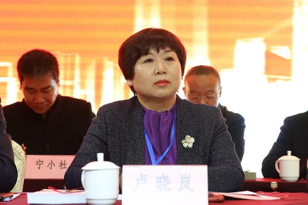 陕西省建筑业协会副会长卢晓岚