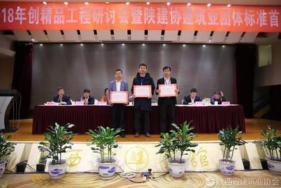 向2017年度陕西省建筑业创新技术应用示范工程称号颁发证书